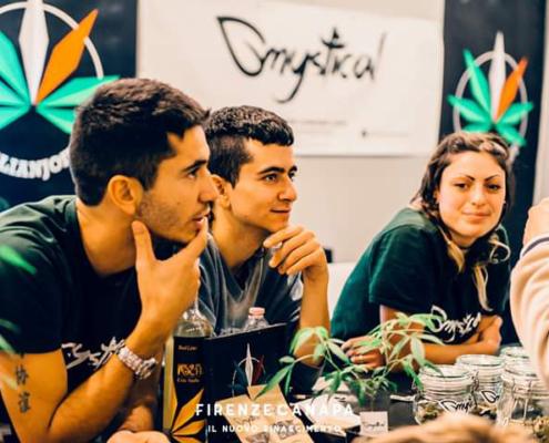 Mystical: azienda produttrice di canapa light in Italia