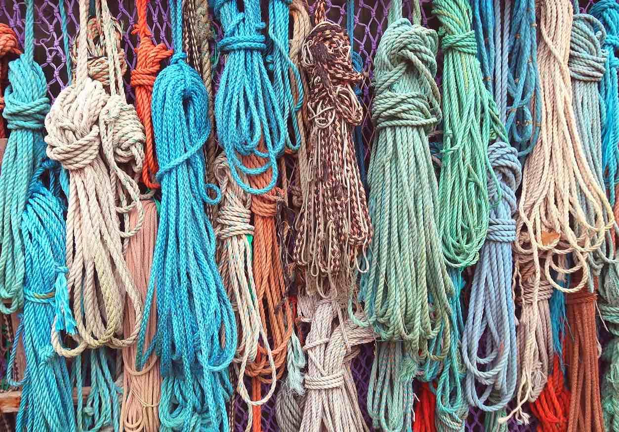 corde canapa coltivata