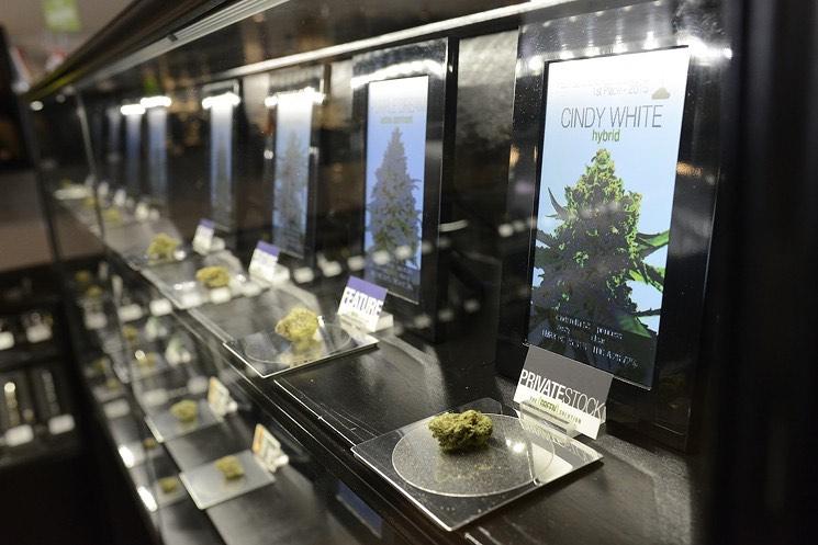 legalizzazione new york 2021
